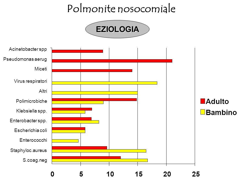 Acinetobacter spp Pseudomonas aerug Miceti Virus respiratori Altri Polimicrobiche Klebsiella spp. Enterobacter spp. Escherichia coli Enterococchi Stap