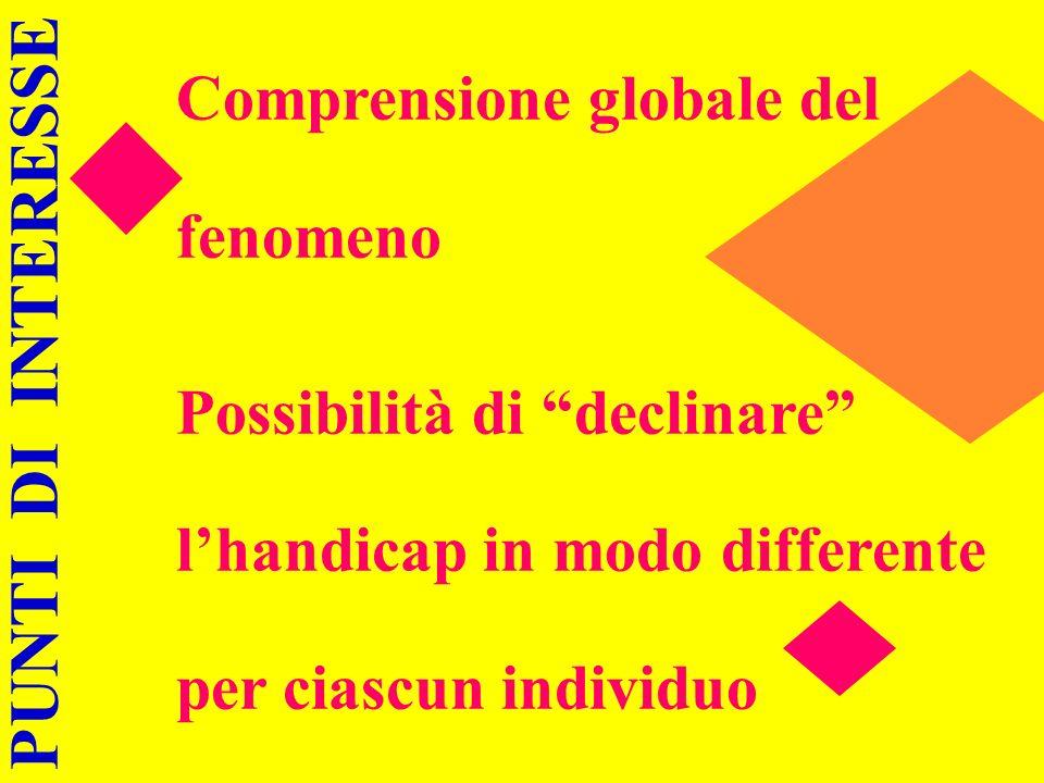 Comprensione globale del fenomeno Possibilità di declinare lhandicap in modo differente per ciascun individuo PUNTI DI INTERESSE
