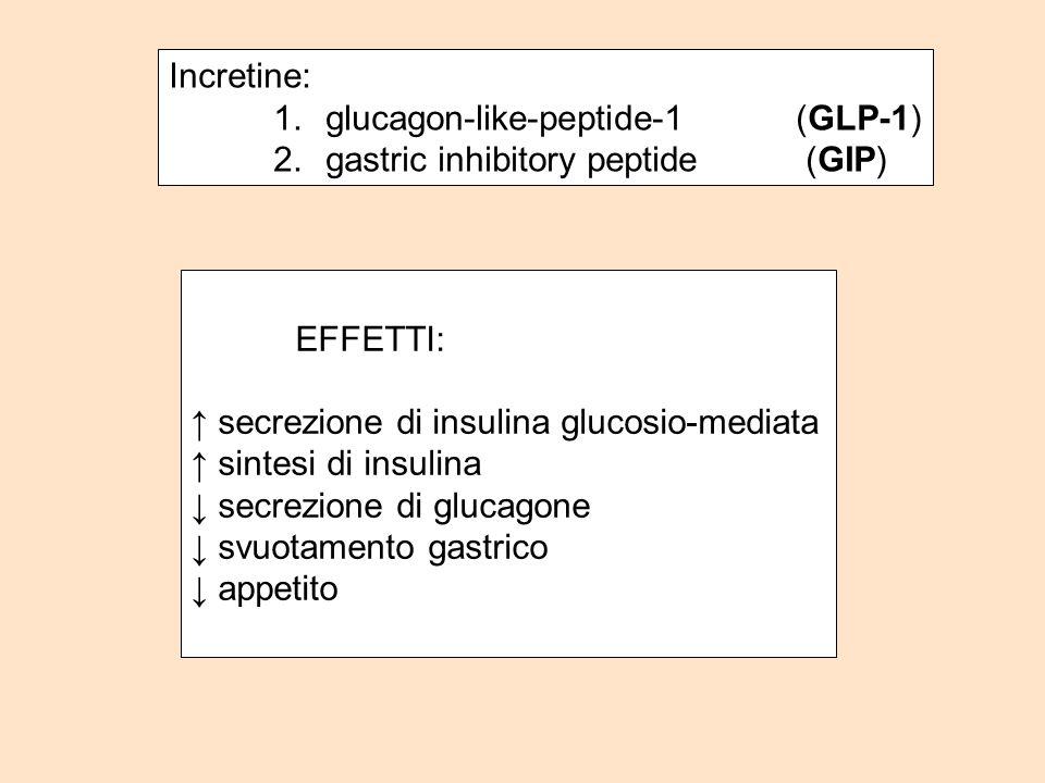 Incretine: 1.glucagon-like-peptide-1 (GLP-1) 2.gastric inhibitory peptide (GIP) EFFETTI: secrezione di insulina glucosio-mediata sintesi di insulina s