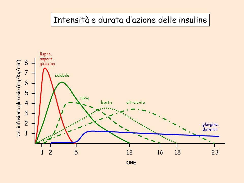 125 12 161823 1 2 3 4 5 6 7 8 ORE vel. infusione glucosio (mg/Kg/min) lispro, aspart, glulisina solubile NPH lenta ultralenta glargina, detemir Intens