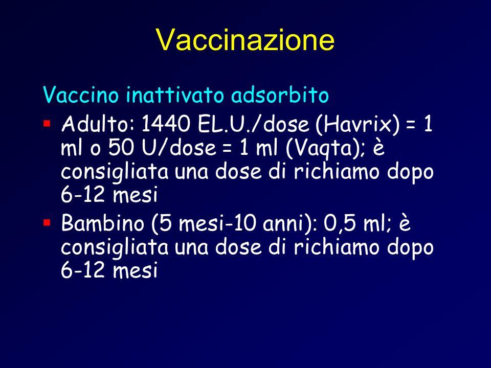 Vaccinazione Vaccino inattivato adsorbito Adulto: 1440 EL.U./dose (Havrix) = 1 ml o 50 U/dose = 1 ml (Vaqta); è consigliata una dose di richiamo dopo 6-12 mesi Bambino (5 mesi-10 anni) : 0,5 ml; è consigliata una dose di richiamo dopo 6-12 mesi