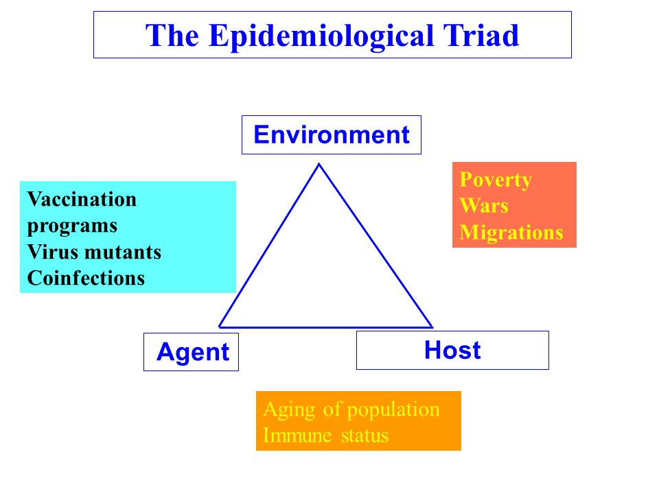 Agent Host Environment The Epidemiological Triad Vaccination programs Virus mutants Coinfections Poverty Wars Migrations Aging of population Immune st
