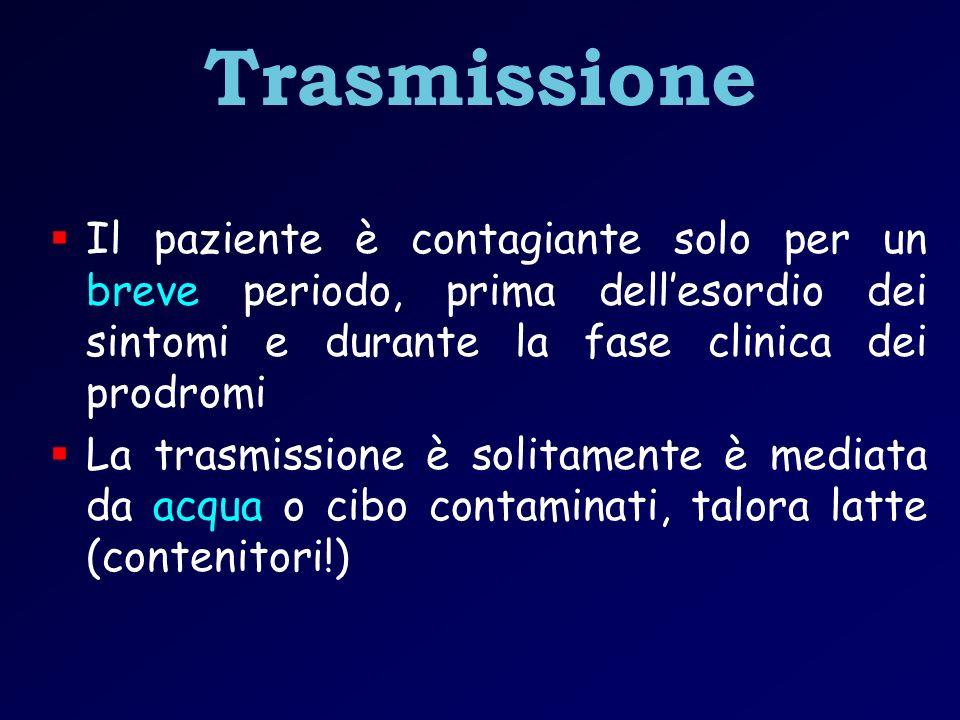 Via parenterale Non ha luogo una viremia persistente, quindi la trasmissione parenterale con sangue infetto, benché possibile, risulta improbabile.