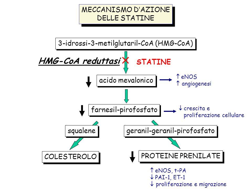 MECCANISMO DAZIONE DELLE STATINE MECCANISMO DAZIONE DELLE STATINE 3-idrossi-3-metilglutaril-CoA (HMG-CoA) acido mevalonico farnesil-pirofosfato COLEST