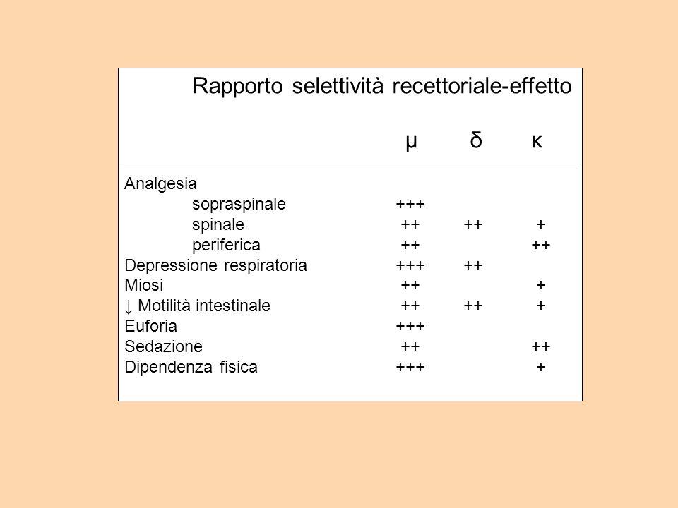 Rapporto selettività recettoriale-effetto μ δκ Analgesia sopraspinale+++ spinale ++++ + periferica ++++ Depressione respiratoria+++++ Miosi ++ + Motilità intestinale ++++ + Euforia+++ Sedazione ++++ Dipendenza fisica+++ +