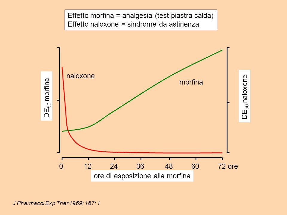 J Pharmacol Exp Ther 1969; 167: 1 Effetto morfina = analgesia (test piastra calda) Effetto naloxone = sindrome da astinenza naloxone morfina DE 50 morfina DE 50 naloxone 0122436486072 ore ore di esposizione alla morfina