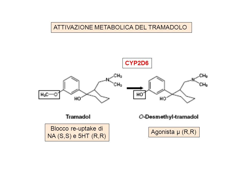 CYP2D6 Blocco re-uptake di NA (S,S) e 5HT (R,R) Agonista μ (R,R) ATTIVAZIONE METABOLICA DEL TRAMADOLO
