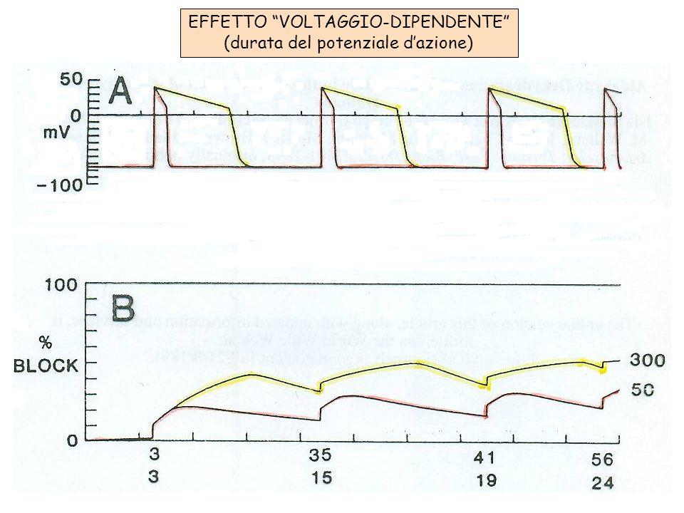EFFETTO VOLTAGGIO-DIPENDENTE (durata del potenziale dazione)