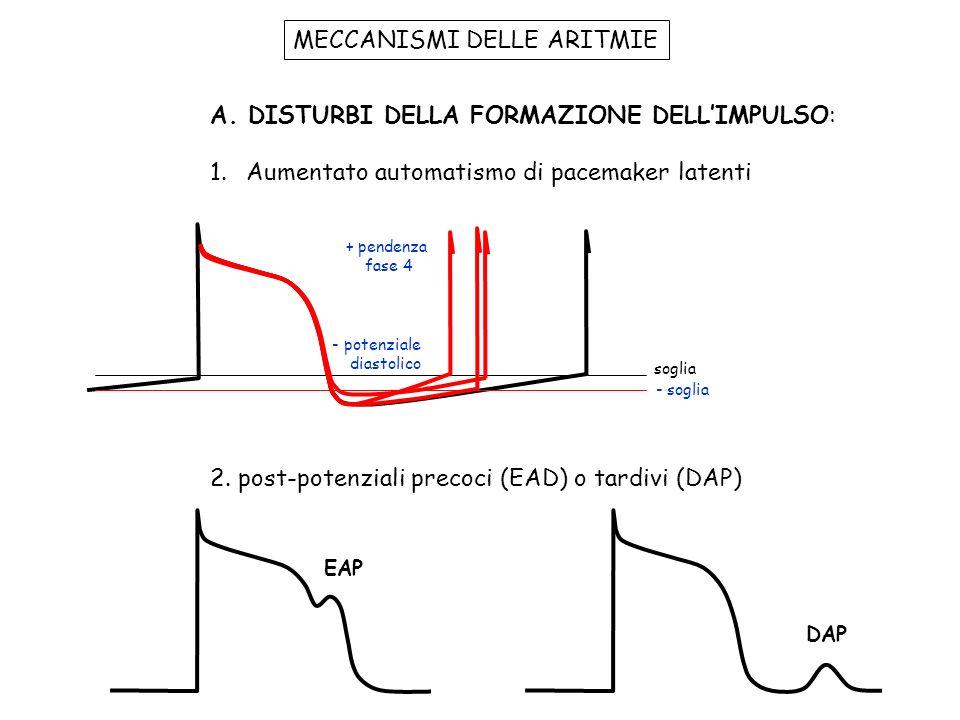 MECCANISMI DELLE ARITMIE A.