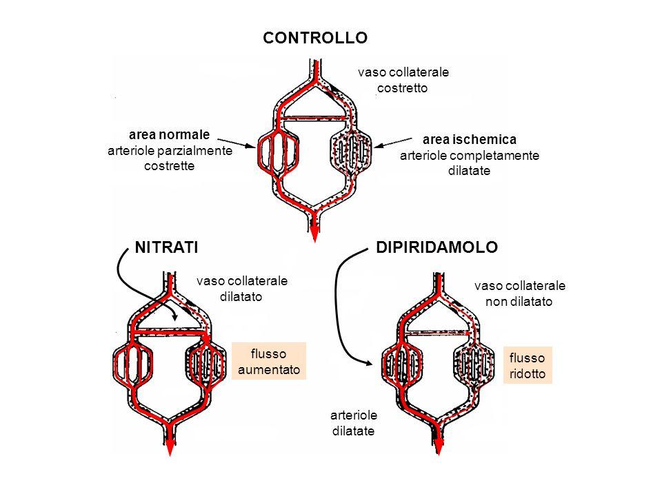 CONTROLLO NITRATIDIPIRIDAMOLO area normale arteriole parzialmente costrette area ischemica arteriole completamente dilatate vaso collaterale costretto vaso collaterale dilatato vaso collaterale non dilatato arteriole dilatate flusso aumentato flusso ridotto