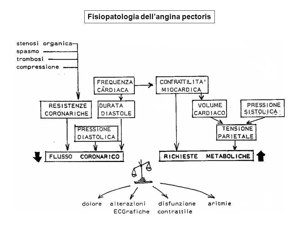 Fisiopatologia dellangina pectoris