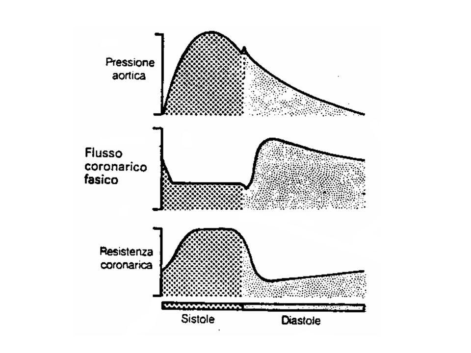 FARMACI ANTIANGINOSIMECCANISMO DAZIONE NITRODERIVATI pre-carico (dilatazione vene a capacitanza) perfusione (dilatazione vasi epicardici) BETA-BLOCCANTI consumo O 2 miocardico ( frequenza e contrattilità) Ca ++ ANTAGONISTI post-carico (dilatazione arterie) perfusione (dilatazione vasi epicardici) RANOLAZINA (2° linea) overload di Ca ++ (blocco corrente lenta del Na + ) IVABRADINA (2° linea) frequenza cardiaca (blocco corrente pacemaker I f ) TRIMETAZIDINA (2° linea) consumo 0 2 (ossidazione ac.