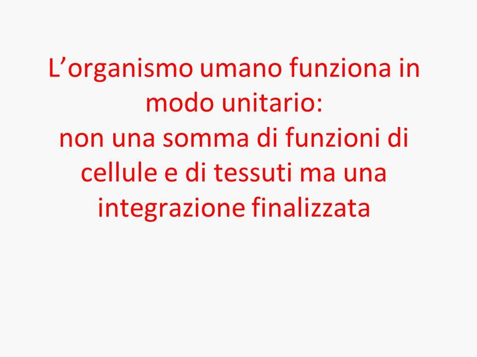 Lorganismo umano funziona in modo unitario: non una somma di funzioni di cellule e di tessuti ma una integrazione finalizzata