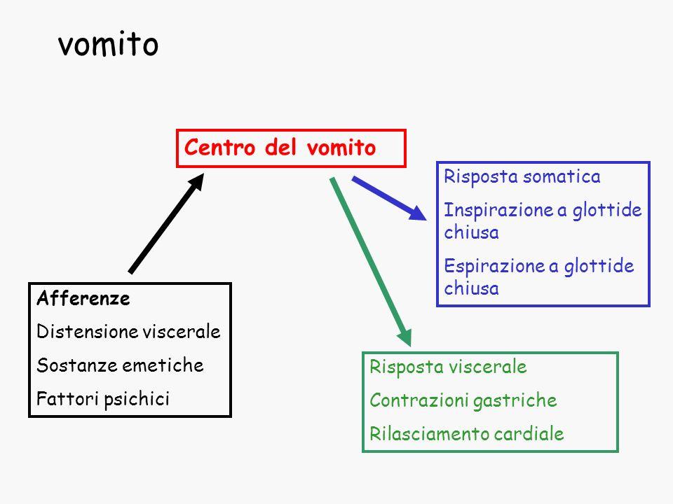 vomito Centro del vomito Afferenze Distensione viscerale Sostanze emetiche Fattori psichici Risposta somatica Inspirazione a glottide chiusa Espirazio
