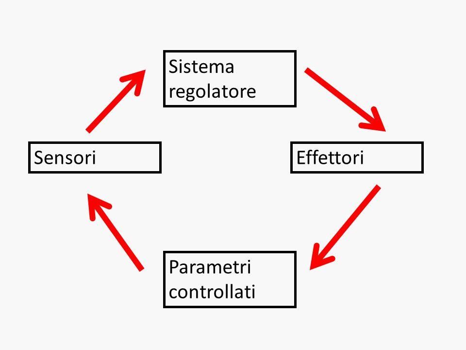 Sistema regolatore SensoriEffettori Parametri controllati