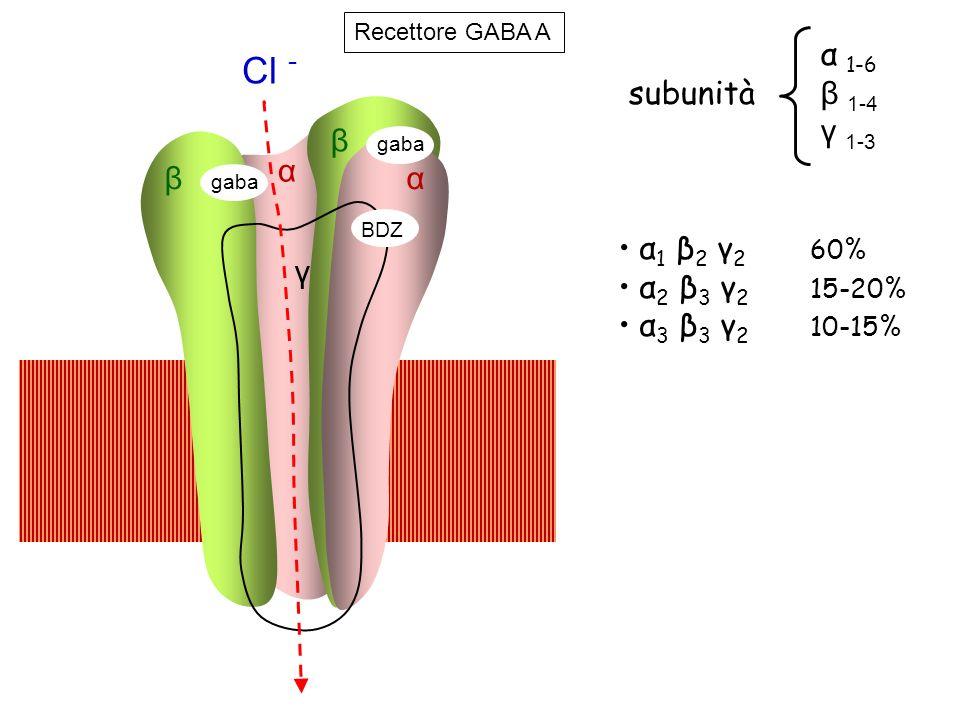 β γ β α gaba BDZ α Cl - gaba α 1 β 2 γ 2 60% α 2 β 3 γ 2 15-20% α 3 β 3 γ 2 10-15% α 1-6 subunità β 1-4 γ 1-3 Recettore GABA A