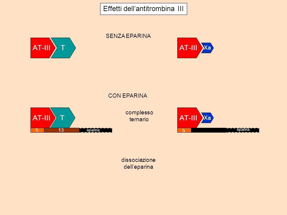 AT-III T Xa 5 eparina AT-III Xa SENZA EPARINA T complesso ternario dissociazione delleparina Effetti dellantitrombina III 513 eparina CON EPARINA