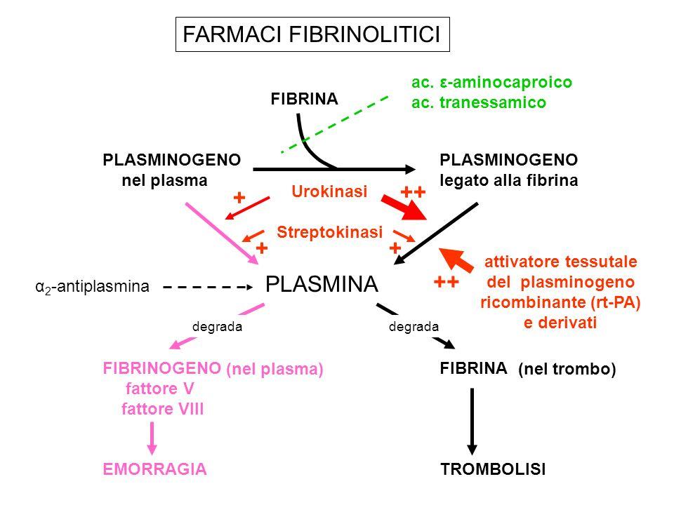 FARMACI FIBRINOLITICI FIBRINAPLASMINOGENO nel plasmalegato alla fibrina α 2 -antiplasmina PLASMINA FIBRINOGENOFIBRINA fattore V fattore VIII EMORRAGIA
