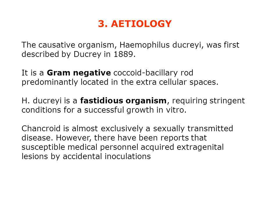 3. AETIOLOGY The causative organism, Haemophilus ducreyi, was first described by Ducrey in 1889. It is a Gram negative coccoid-bacillary rod predomina