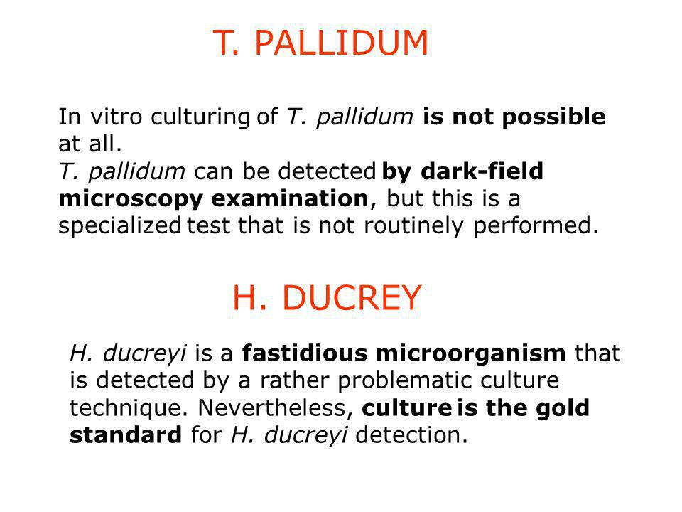 H. ducreyi is a fastidious microorganism that is detected by a rather problematic culture technique. Nevertheless, culture is the gold standard for H.