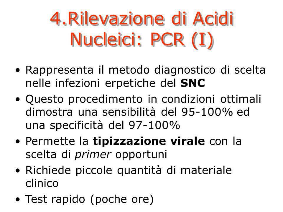 4.Rilevazione di Acidi Nucleici: PCR (I) Rappresenta il metodo diagnostico di scelta nelle infezioni erpetiche del SNC Questo procedimento in condizio