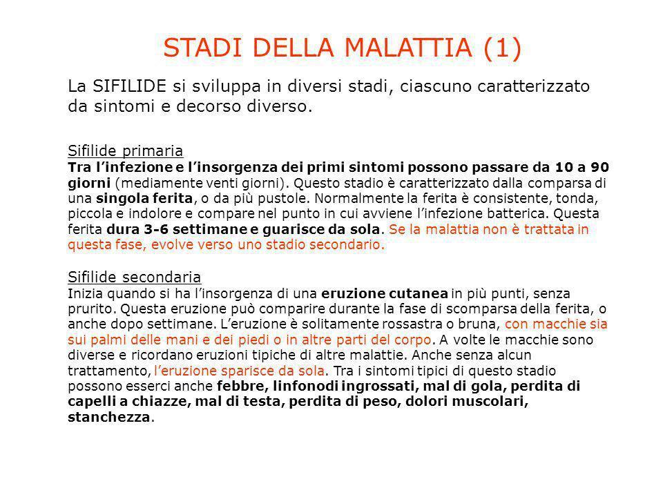 La SIFILIDE si sviluppa in diversi stadi, ciascuno caratterizzato da sintomi e decorso diverso. Sifilide primaria Tra linfezione e linsorgenza dei pri