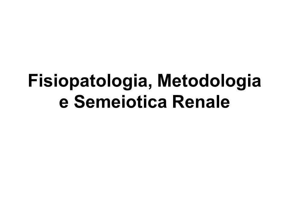 Manifestazioni cardine di patologia renale Anuria Oliguria Poliuria Disuria Pollachiuria Stranguria Ritenzione urinaria Incontinenza urinaria Ematuria Proteinuria Isostenuria