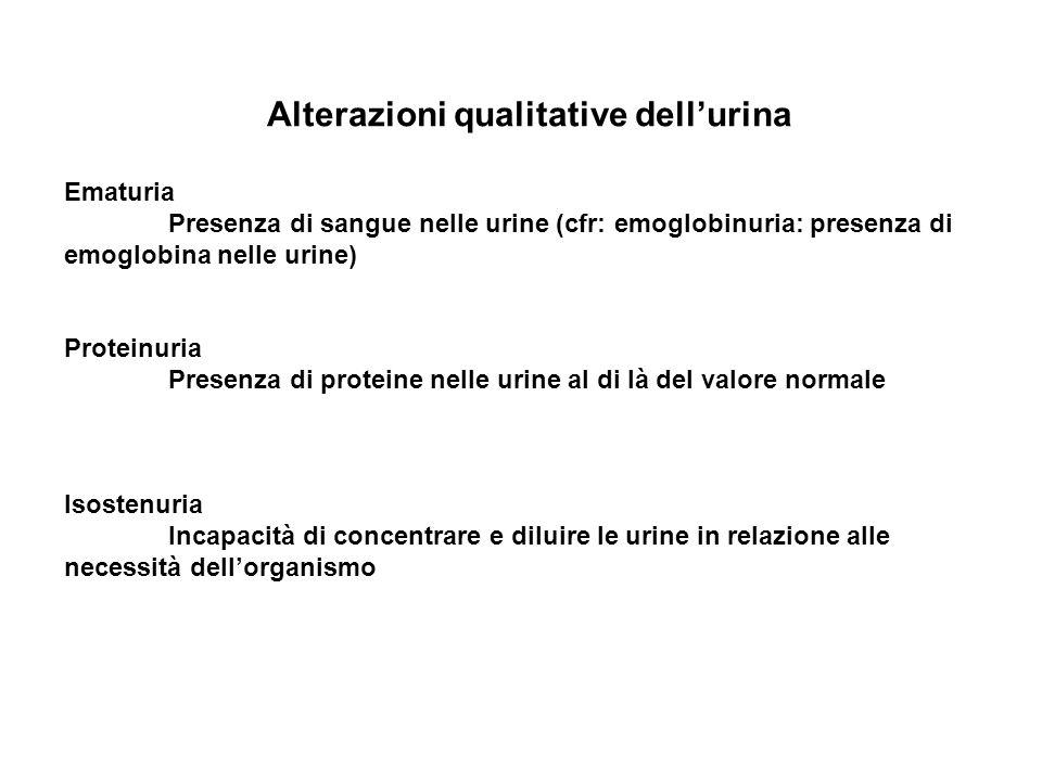 Alterazioni qualitative dellurina Ematuria Presenza di sangue nelle urine (cfr: emoglobinuria: presenza di emoglobina nelle urine) Proteinuria Presenz