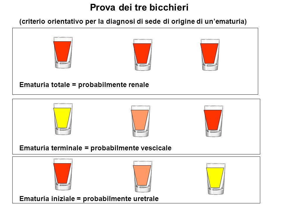 Conseguenze dellinsufficienza renale cronica Disturbi idro-elettrolitici 1)Isostenuria = incapacità di diluire e concentrare le urine.