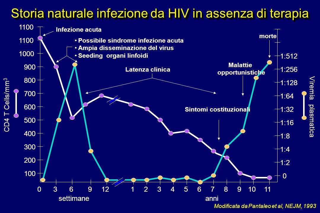 Storia naturale infezione da HIV in assenza di terapia Modificata da Pantaleo et al, NEJM, 1993 settimane CD4 T Cells/mm 3 Viremia plasmatica 036211110912 100 200 300 400 500 600 700 800 900 1000 1100 anni 3456789 0 1:2 1:4 1:8 1:16 1:32 1:64 1:128 1:256 1:512 Infezione acuta Possibile sindrome infezione acuta Ampia disseminazione del virus Seeding organi linfoidi Latenza clinica Sintomi costituzionali Malattie opportunistiche morte