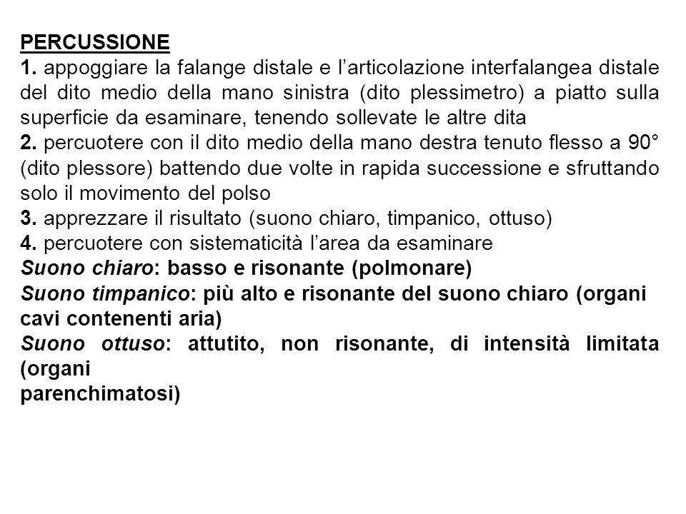 PERCUSSIONE 1.