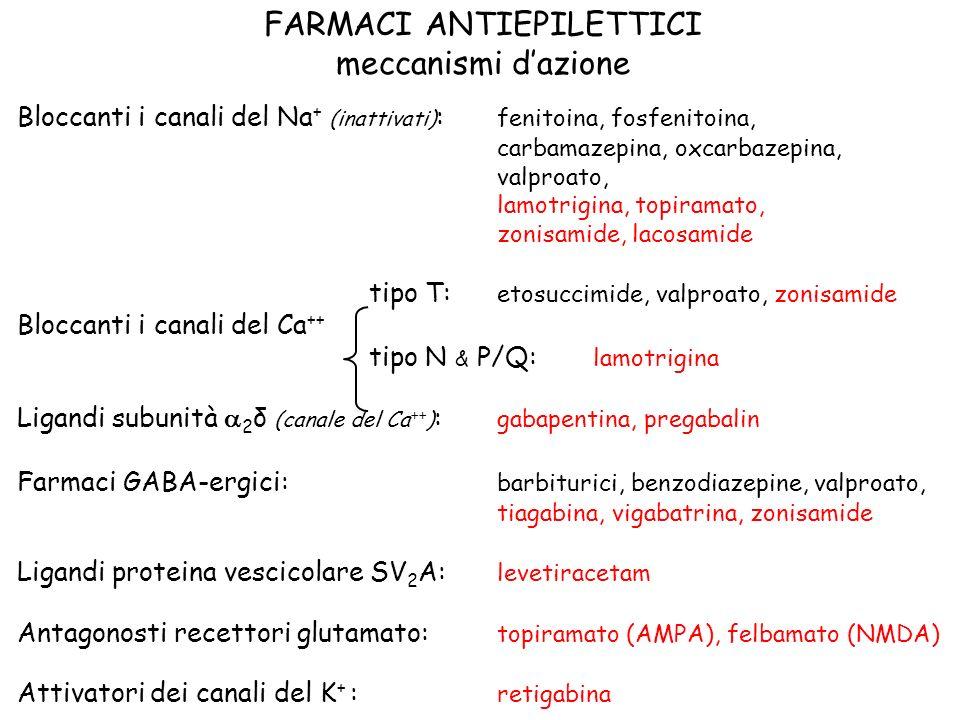 FARMACI ANTIEPILETTICI meccanismi dazione Bloccanti i canali del Na + (inattivati) : fenitoina, fosfenitoina, carbamazepina, oxcarbazepina, valproato,