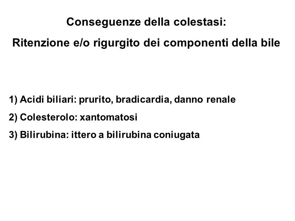 Conseguenze della colestasi: Ritenzione e/o rigurgito dei componenti della bile 1)Acidi biliari: prurito, bradicardia, danno renale 2)Colesterolo: xantomatosi 3)Bilirubina: ittero a bilirubina coniugata
