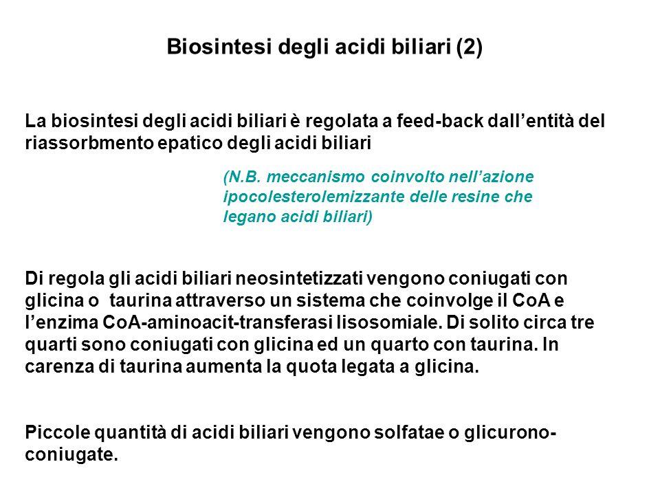 Biosintesi degli acidi biliari (2) La biosintesi degli acidi biliari è regolata a feed-back dallentità del riassorbmento epatico degli acidi biliari (N.B.