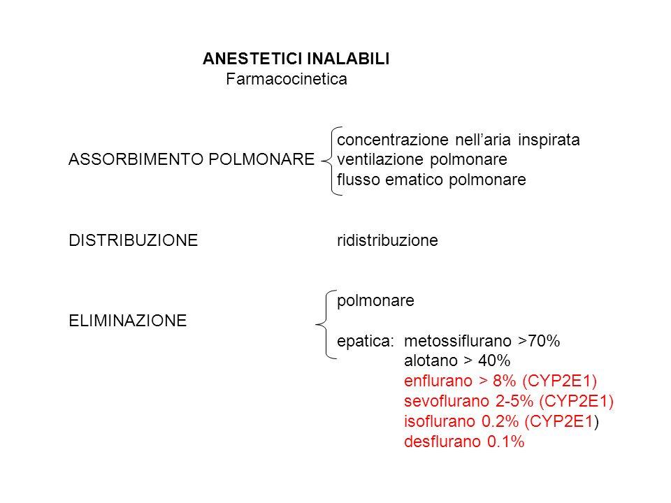ANESTETICI INALABILI Farmacocinetica concentrazione nellaria inspirata ASSORBIMENTO POLMONAREventilazione polmonare flusso ematico polmonare DISTRIBUZ