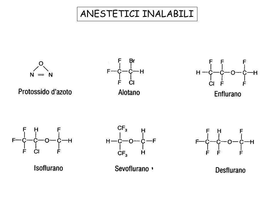Definizione dello di stato di anestesia: Analgesia Amnesia Perdita di coscienza Perdita dei riflessi nocicettivi Rilasciamento muscolare