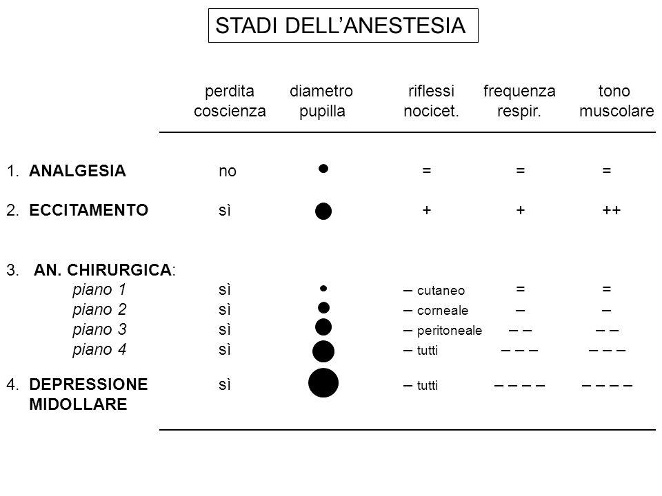 ANESTETICI INIETTABILI FARMACOinduzionerecuperoCommenti Tiopentaleveloceveloce depressione cardiovascolare, porfiria Propofolvelocemolto per induzione e mantenimento veloce ipotensione, antiemetico Midazolamlentalento anestesia bilanciata, amnesia marcata, (antag.: flumazenil) Ketaminaintermediaintermedia stimolazione cardiovascolare, ipertensione endocranica, allucinazioni al risveglio Fentanillentalento neurolepto-analgesia: (analgesico + droperidolo, (antag.: naloxone) oppiode)