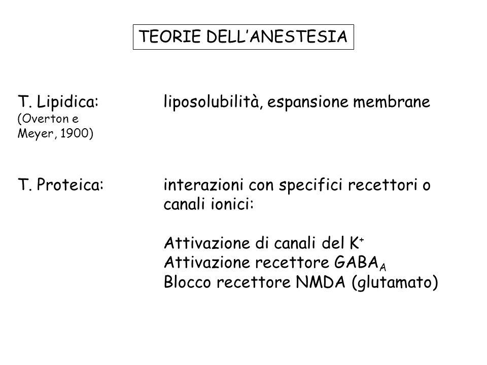 TEORIE DELLANESTESIA T. Lipidica: liposolubilità, espansione membrane (Overton e Meyer, 1900) T. Proteica: interazioni con specifici recettori o canal