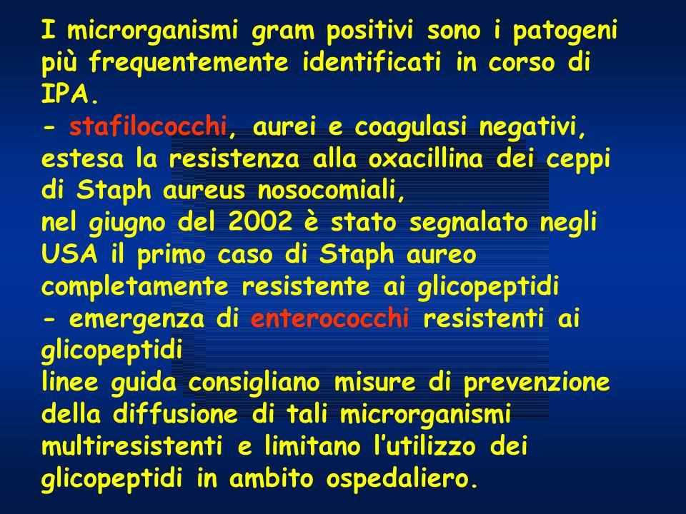 I microrganismi gram positivi sono i patogeni più frequentemente identificati in corso di IPA. - stafilococchi, aurei e coagulasi negativi, estesa la