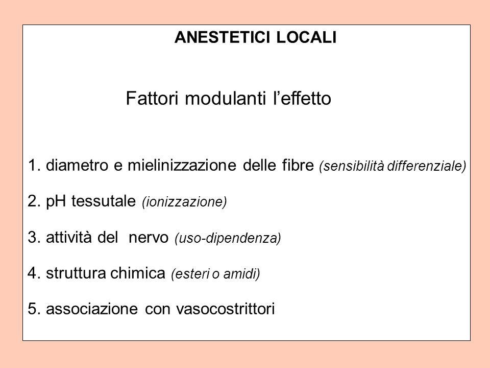 ANESTETICI LOCALI Fattori modulanti leffetto 1.diametro e mielinizzazione delle fibre (sensibilità differenziale) 2.pH tessutale (ionizzazione) 3.attività del nervo (uso-dipendenza) 4.struttura chimica (esteri o amidi) 5.associazione con vasocostrittori