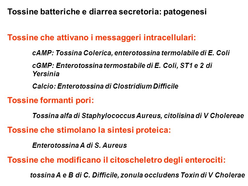 Tossine batteriche e diarrea secretoria: patogenesi Tossine che attivano i messaggeri intracellulari: cAMP: Tossina Colerica, enterotossina termolabile di E.