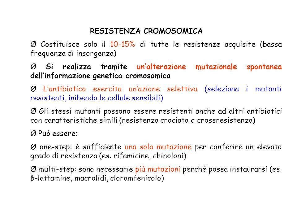 RESISTENZA CROMOSOMICA Ø Costituisce solo il 10-15% di tutte le resistenze acquisite (bassa frequenza di insorgenza) Ø Si realizza tramite unalterazione mutazionale spontanea dellinformazione genetica cromosomica Ø Lantibiotico esercita unazione selettiva (seleziona i mutanti resistenti, inibendo le cellule sensibili) Ø Gli stessi mutanti possono essere resistenti anche ad altri antibiotici con caratteristiche simili (resistenza crociata o crossresistenza) Ø Può essere: Ø one-step: è sufficiente una sola mutazione per conferire un elevato grado di resistenza (es.