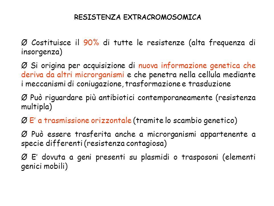 RESISTENZA EXTRACROMOSOMICA Ø Costituisce il 90% di tutte le resistenze (alta frequenza di insorgenza) Ø Si origina per acquisizione di nuova informazione genetica che deriva da altri microrganismi e che penetra nella cellula mediante i meccanismi di coniugazione, trasformazione e trasduzione Ø Può riguardare più antibiotici contemporaneamente (resistenza multipla) Ø E a trasmissione orizzontale (tramite lo scambio genetico) Ø Può essere trasferita anche a microrganismi appartenente a specie differenti (resistenza contagiosa) Ø E dovuta a geni presenti su plasmidi o trasposoni (elementi genici mobili)