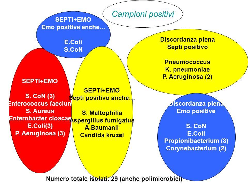 Campioni positivi SEPTI+EMO S. CoN (3) Enterococcus faecium S. Aureus Enterobacter cloacae E.Coli(3) P. Aeruginosa (3) Discordanza piena Septi positiv