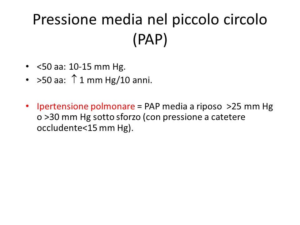 Pressione media nel piccolo circolo (PAP) <50 aa: 10-15 mm Hg. >50 aa: 1 mm Hg/10 anni. Ipertensione polmonare = PAP media a riposo >25 mm Hg o >30 mm
