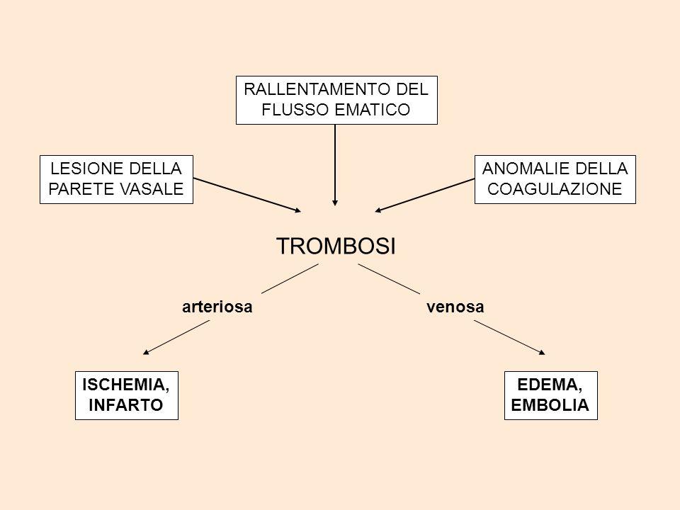 LESIONE ENDOTELIO VASALE aggregazioneesposizione liberazione di piastrinicadi collagene fattori tessutali fattore Xa protrombinatrombina (fattore II) fibrinogenofibrina TROMBO BIANCO TROMBO ROSSO FARMACI ANTITROMBOTICI via intrinseca via estrinseca (VII) (IX) ANTIAGGREGANTI ANTICOAGULANTI FIBRINOLITICI