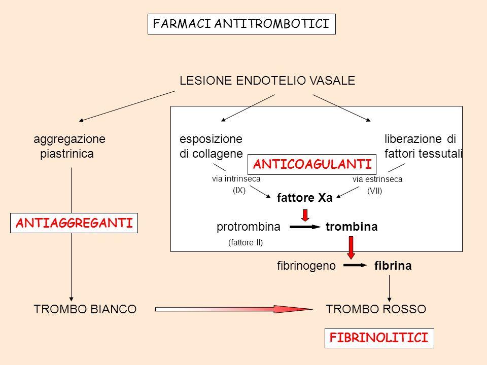 FASE PIASTRINICA GP Ia GP Ib GP IIb/IIIa trombossano A 2 ADP vWF collagene fibrinogeno + + GP IIb/IIIa prostaciclina _