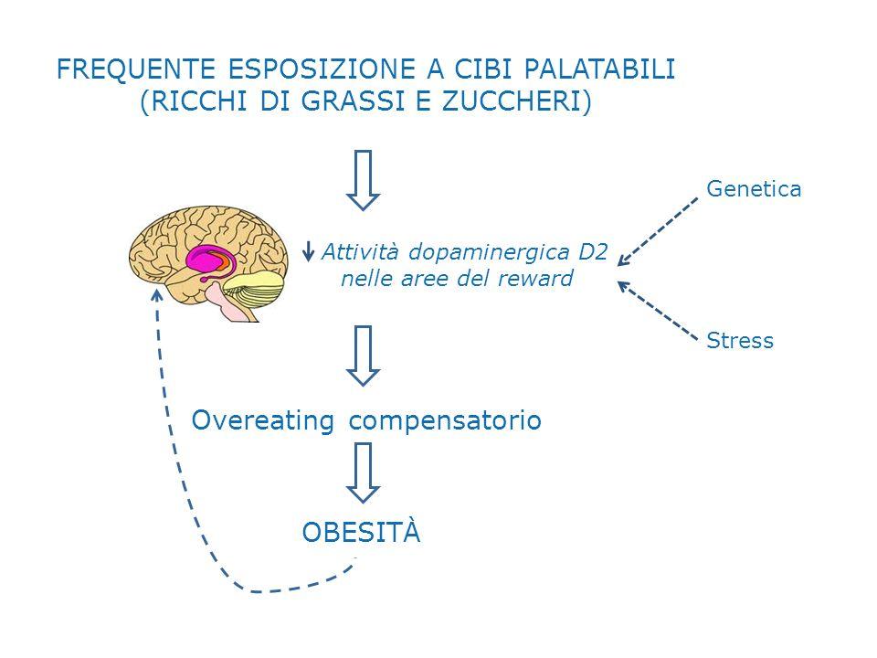 FREQUENTE ESPOSIZIONE A CIBI PALATABILI (RICCHI DI GRASSI E ZUCCHERI) Attività dopaminergica D2 nelle aree del reward Overeating compensatorio OBESITÀ Genetica Stress