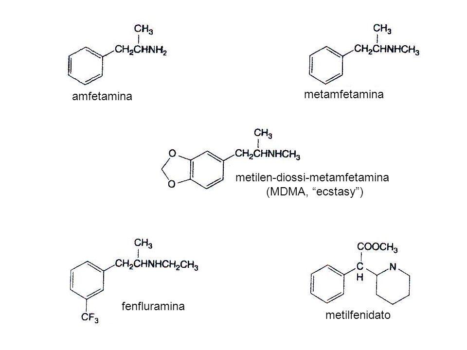 tetraidrocannabinolo cannabinolo (inattivo) anandamide (agonista endogeno)