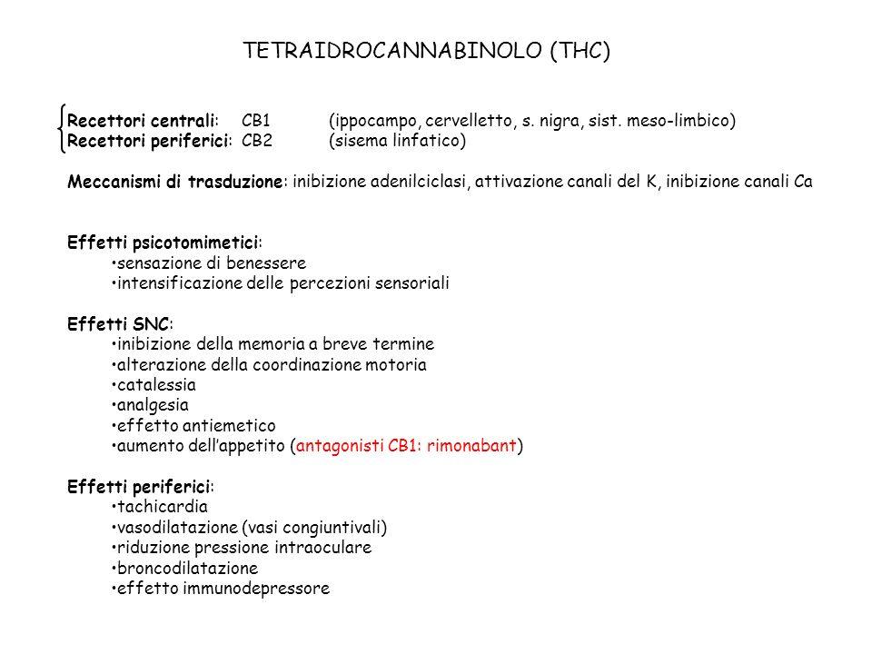 TETRAIDROCANNABINOLO (THC) Recettori centrali: CB1(ippocampo, cervelletto, s. nigra, sist. meso-limbico) Recettori periferici: CB2(sisema linfatico) M